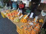高知県のきんかんやボンたんやみかん、など。数えられないぐらい種類でした。A small smattering of locally-produced citrus. Too many types to count...